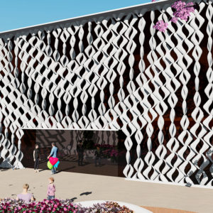 A determinant building's skin (+ video)